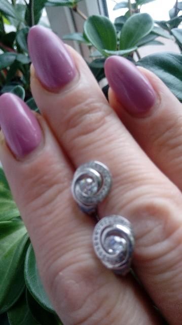 Серебряные пуссеты