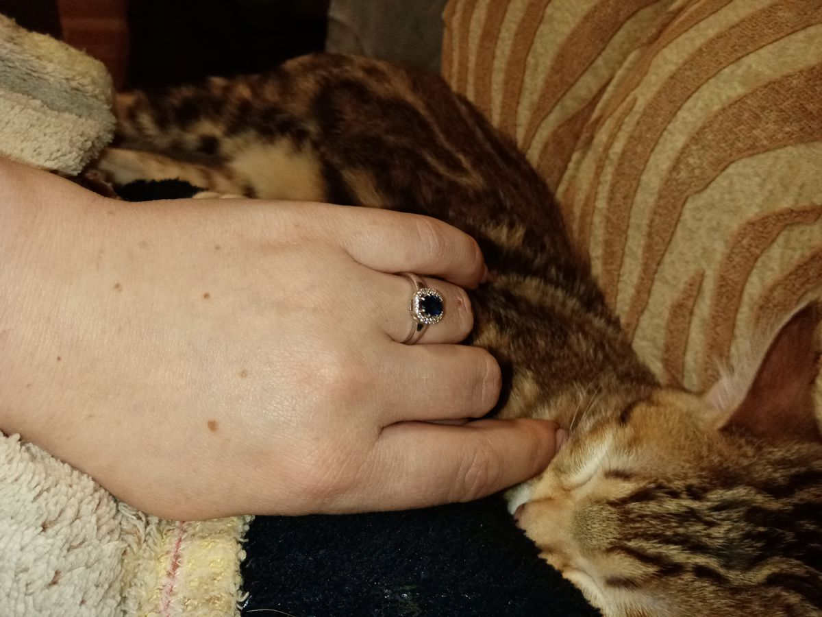 Кольцо с камушком)))
