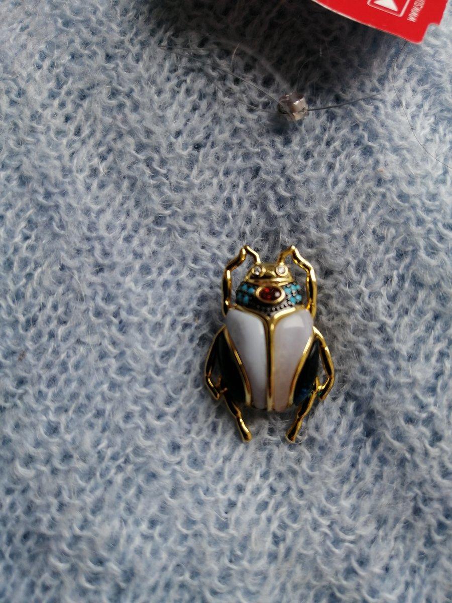 Самый красивый жук!