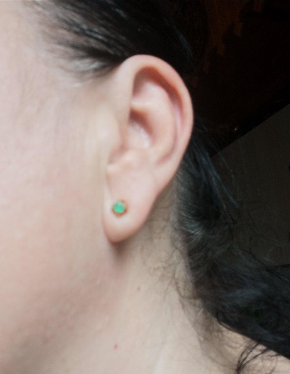 Зелёные гвоздики