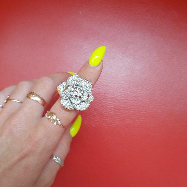 Золотое кольцо мечты