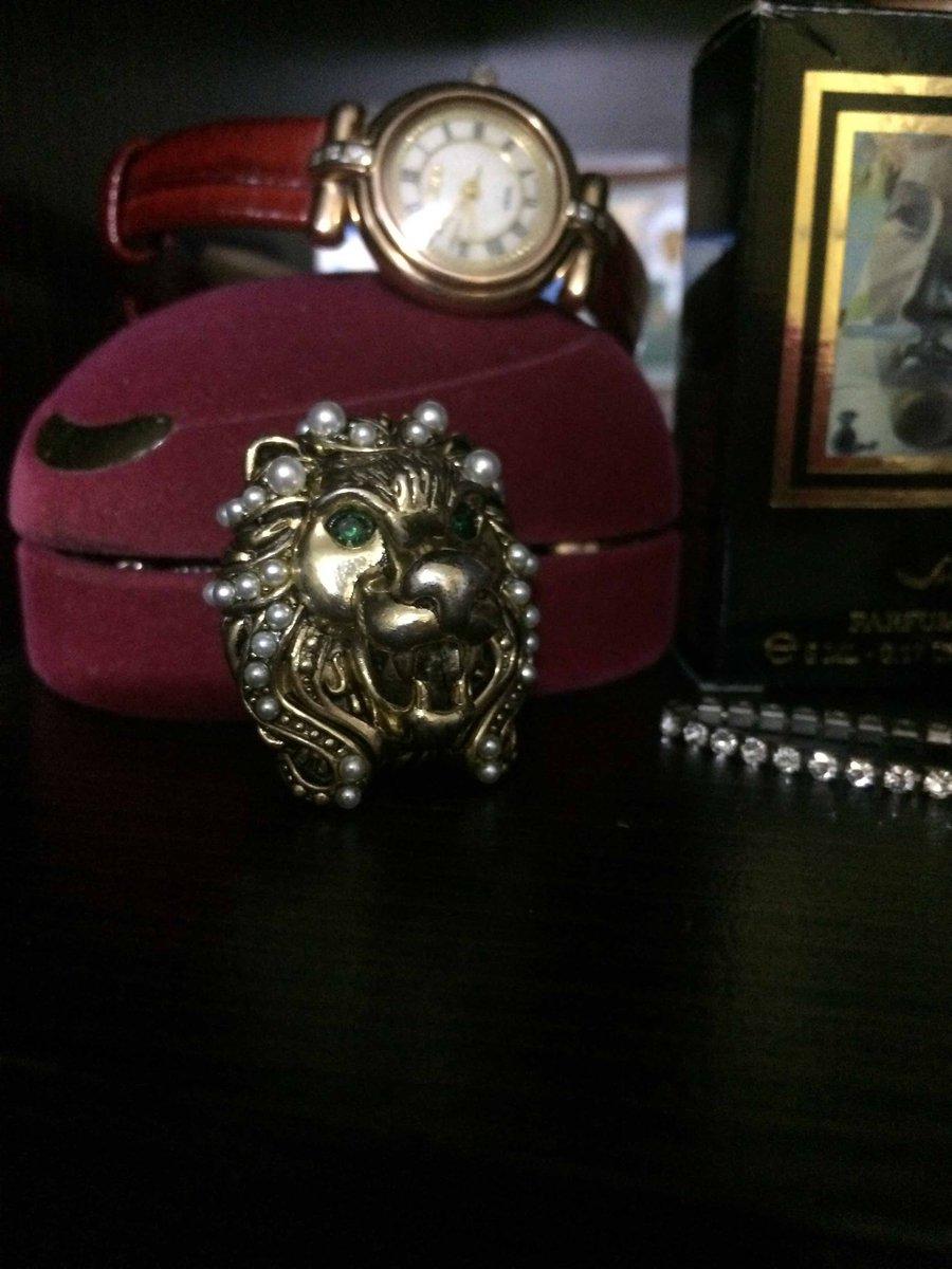 Символ силы и воли- лев