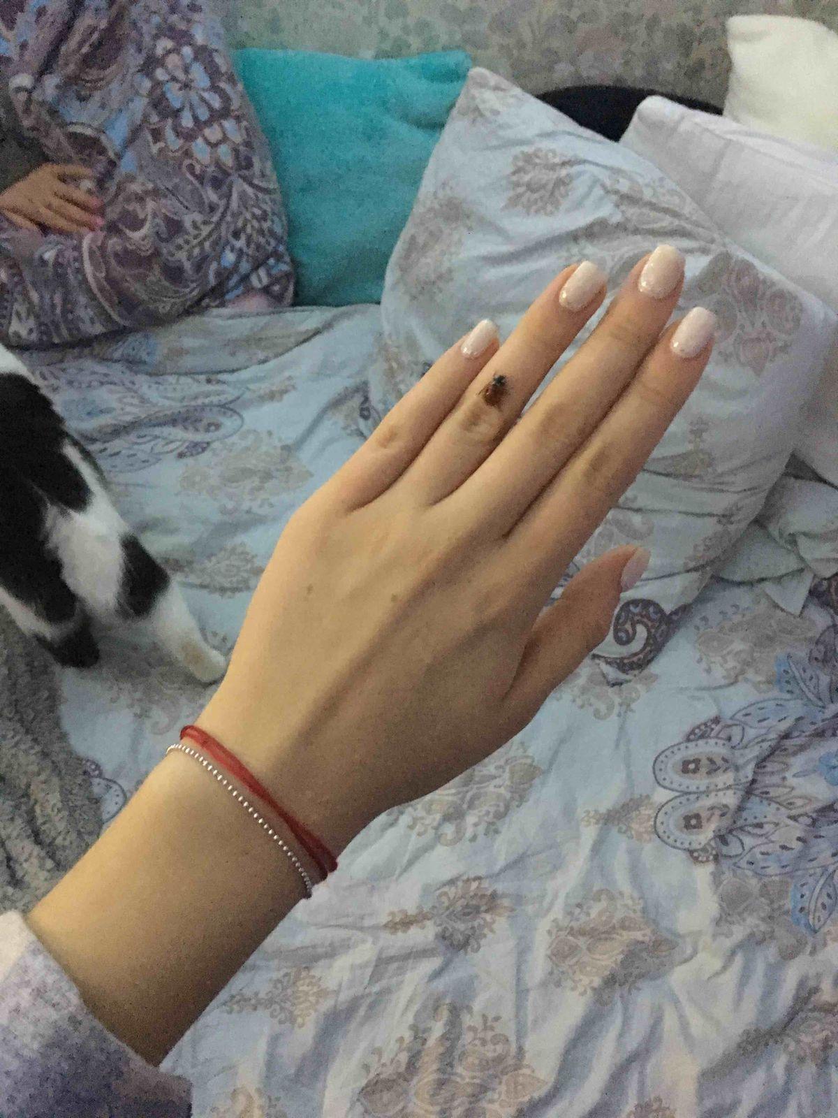 Очень милый браслет ♥️😁