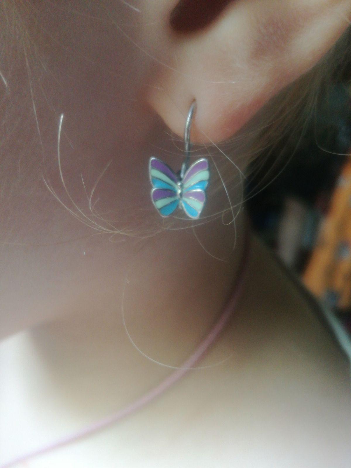 Красивые бабочки!