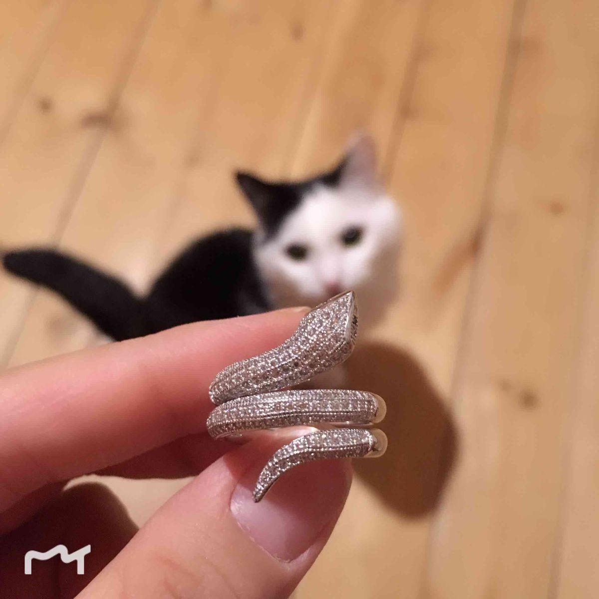 Кольцо- змея!